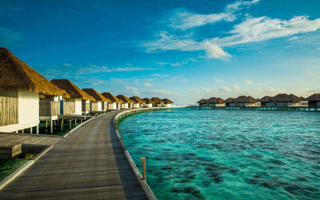 La COMO Maalifushi există câteva ceva potrivit atât pentru cupluri, cât și pentru familii sau familii și copii. Pasionații de pescuit pot lua parte la o seară de pescuit tradițional maldivian privind apusul de soare, iar copiii se pot bucura de câteva minute de spectacol realizat de delfini.